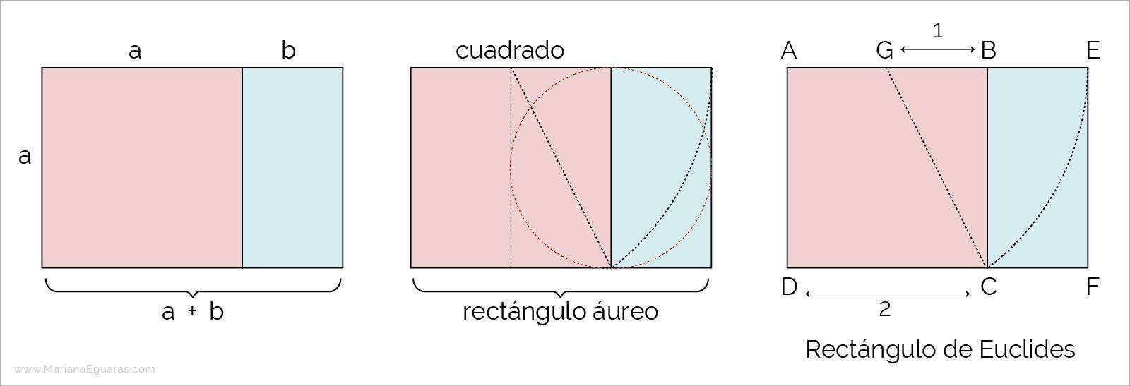 La Sección áurea En La Composición Y Maquetación De Libros Marianaeguaras
