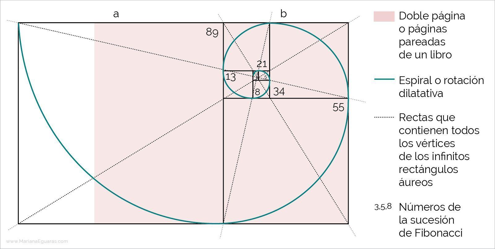 La sección áurea en la composición y maquetación de libros - La sucesión de Fibonacci