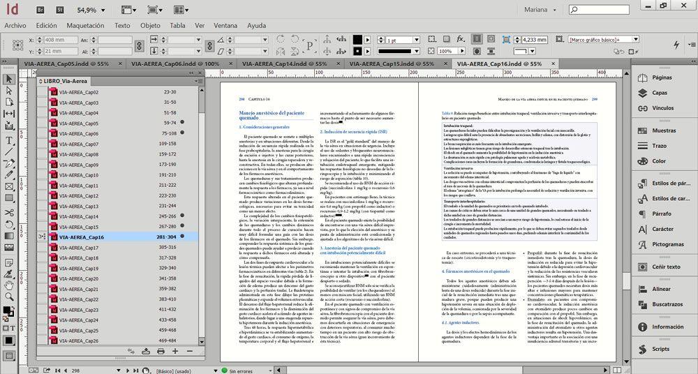 3 trucos de InDesign para dominarlo como un experto - Trabajo con archivo libro