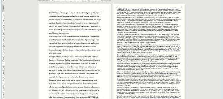 Por qué la cantidad de páginas es un sinsentido: la utilidad de las matrices o caracteres con espacio