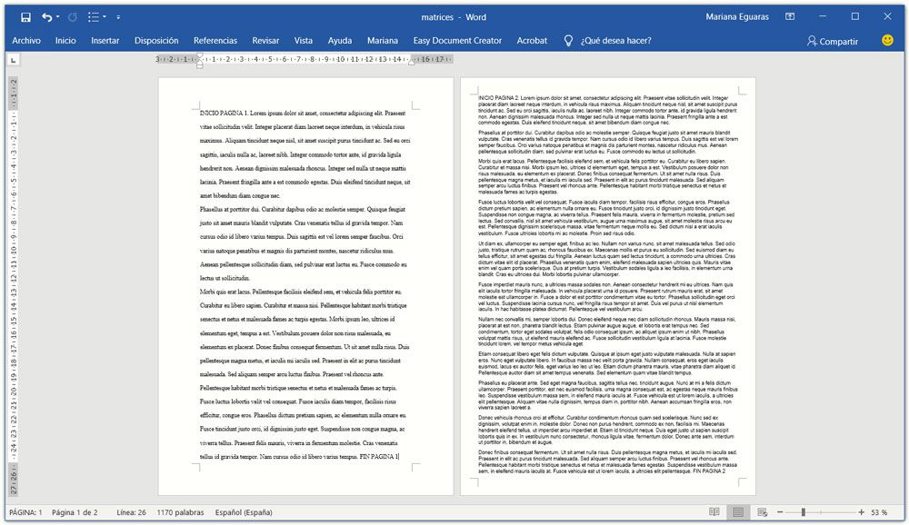 Por qué la cantidad de páginas es un sinsentido: la utilidad de los matrices o caracteres con espacio