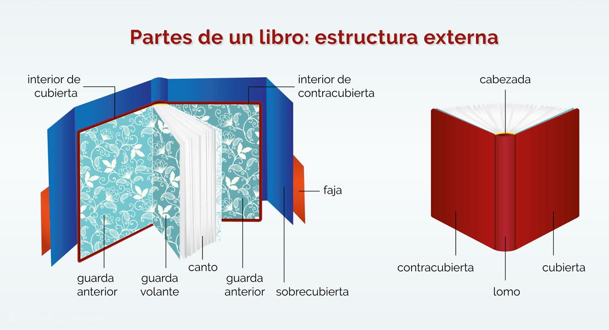 Partes de un libro: estructura externa (terminología básica)